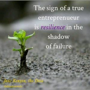 quote box entrepreneur resilience in shadow of no 111